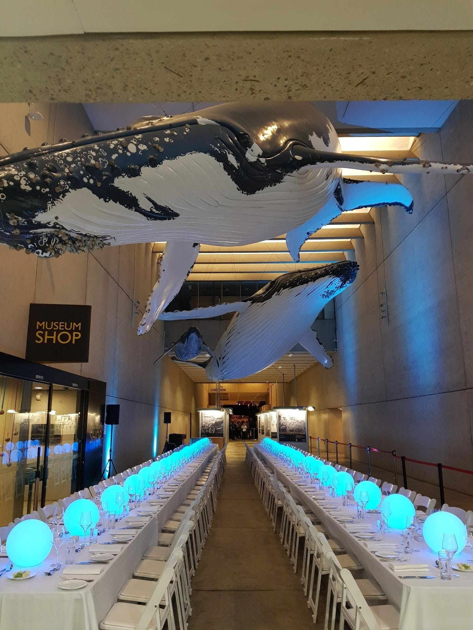 Whale Mall Event
