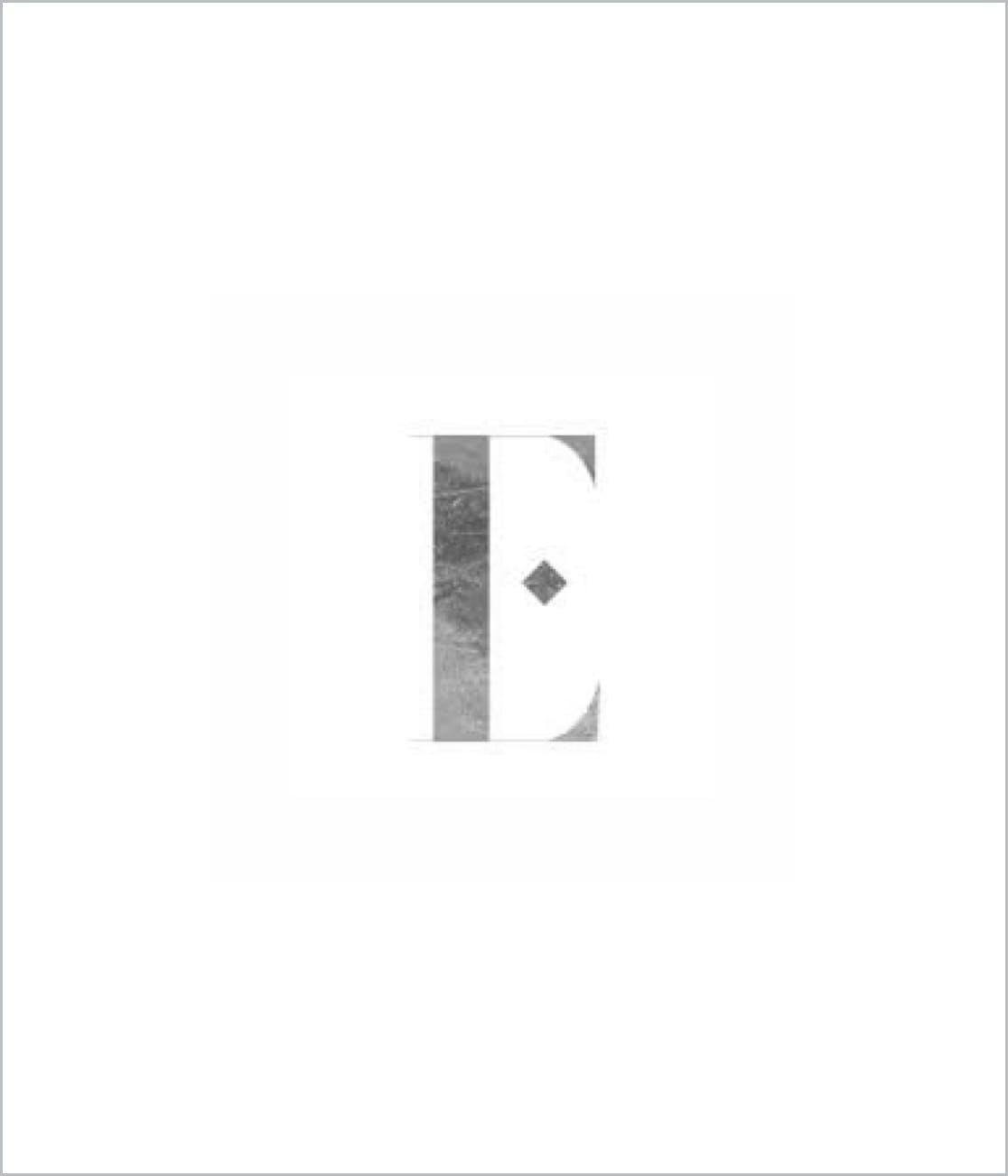 E Logo Supplier